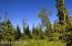 C7 Alaskan Wildwood Ranch(r) (5)