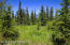 C7 Alaskan Wildwood Ranch(r) (6)