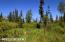 C7 Alaskan Wildwood Ranch(r) (7)