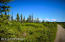 C7 Alaskan Wildwood Ranch(r) (12)