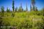 C7 Alaskan Wildwood Ranch(r) (13)