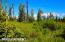 C7 Alaskan Wildwood Ranch(r) (14)