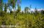 C7 Alaskan Wildwood Ranch(r) (16)