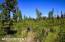 C7 Alaskan Wildwood Ranch(r) (17)
