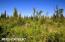 C7 Alaskan Wildwood Ranch(r) (18)