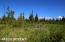 C7 Alaskan Wildwood Ranch(r) (19)