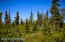C7 Alaskan Wildwood Ranch(r) (20)