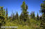 C7 Alaskan Wildwood Ranch(r) (22)