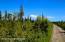 C7 Alaskan Wildwood Ranch(r) (23)