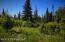 C16 Alaskan Wildwood Ranch(r) (2)