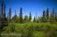 C16 Alaskan Wildwood Ranch(r) (3)