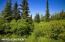 C16 Alaskan Wildwood Ranch(r) (4)