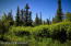 C16 Alaskan Wildwood Ranch(r) (8)