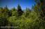 C16 Alaskan Wildwood Ranch(r) (9)
