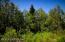 C16 Alaskan Wildwood Ranch(r) (11)