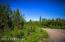 C16 Alaskan Wildwood Ranch(r) (13)