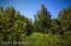 C16 Alaskan Wildwood Ranch(r) (14)