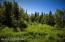 C16 Alaskan Wildwood Ranch(r) (15)