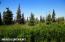 C16 Alaskan Wildwood Ranch(r) (18)