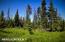 C16 Alaskan Wildwood Ranch(r) (20)