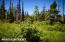 C16 Alaskan Wildwood Ranch(r) (22)