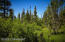 C16 Alaskan Wildwood Ranch(r) (26)