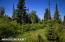 C16 Alaskan Wildwood Ranch(r) (28)