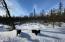 23 Snowshoe Adventures