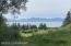 Kachemak Bay View