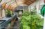 Inside green house