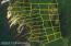 Petersburg Map Viewer LOT Numbered