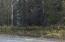 Tote Road 2
