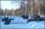 3 moose in driveway