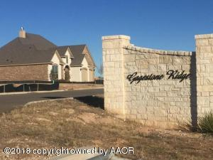 Property for sale at 22 Gagestone Dr, Canyon,  TX 79015