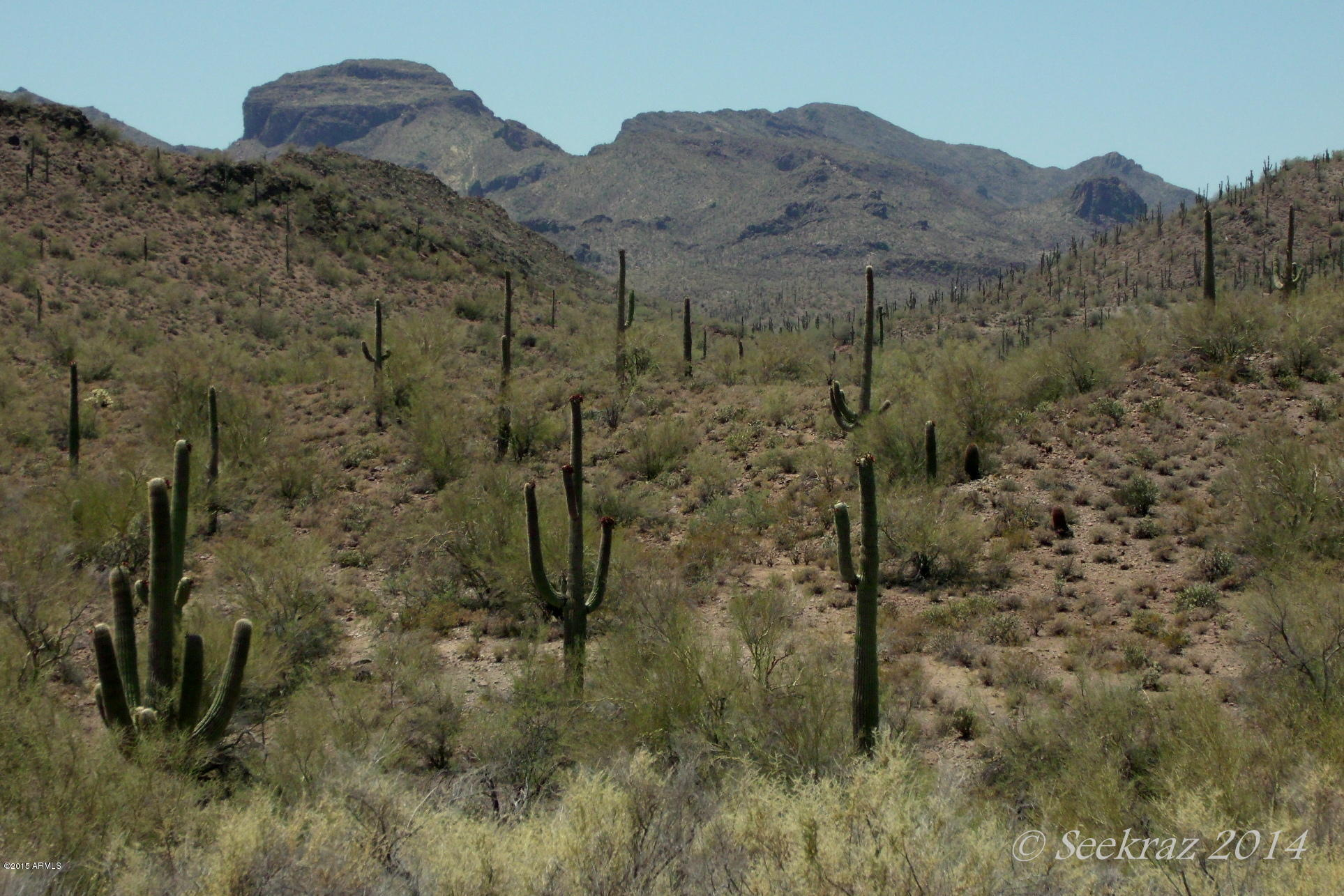 0 N Cow Creek Road Morristown, AZ 85342 - MLS #: 5261853