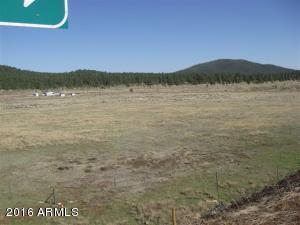 3460 E Mountain Man Trail Williams, AZ 86046