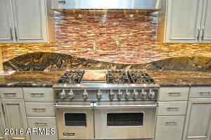 Viking Appliances and Leatherized Granit