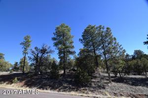 2246 Grizzly Drive Overgaard, AZ 85933 - MLS #: 5575130
