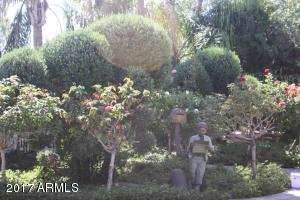 Thumbnail Photo