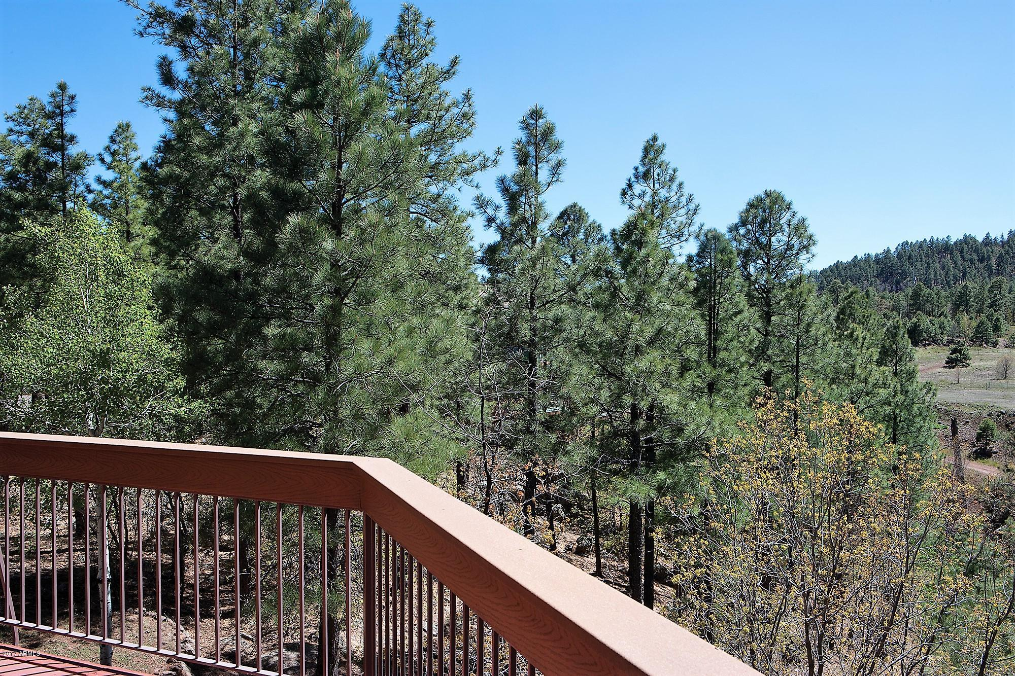 MLS 5618913 2163 CREEKSIDE Court, Pinetop, AZ Pinetop AZ Scenic