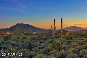 41796 N 99th Way Scottsdale AZ-print-027