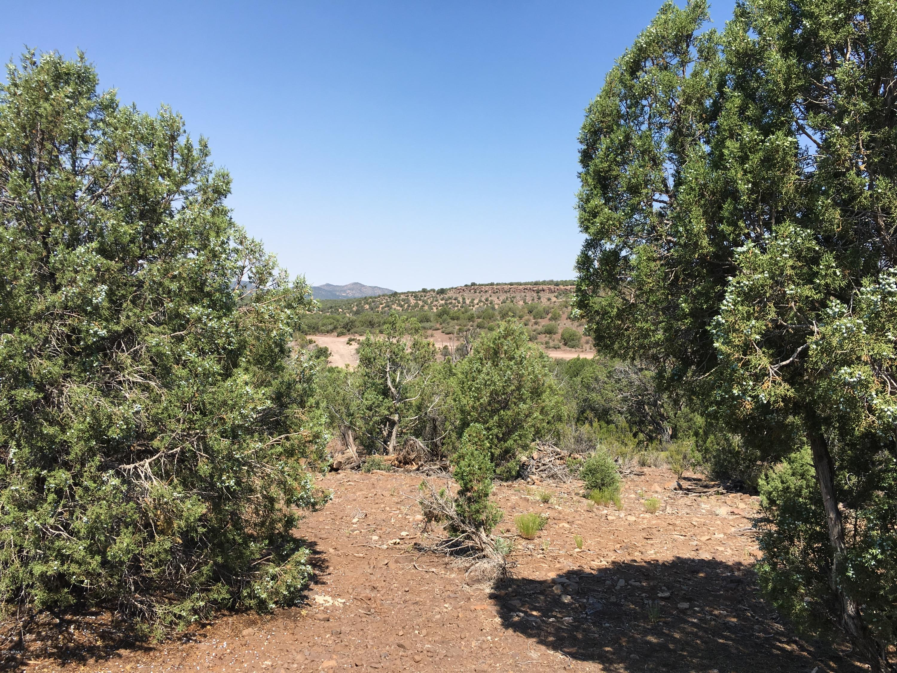 MLS 5623517 23 E Willow Creek Ranch, Kingman, AZ Kingman AZ Equestrian