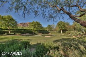 Large Golf Area