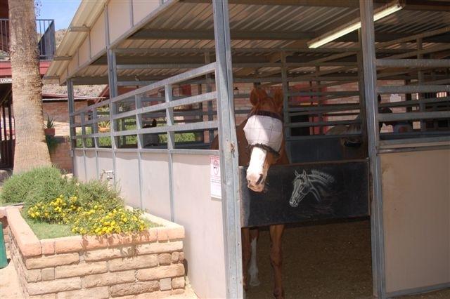 Phoenix AZ 85024 Photo 15