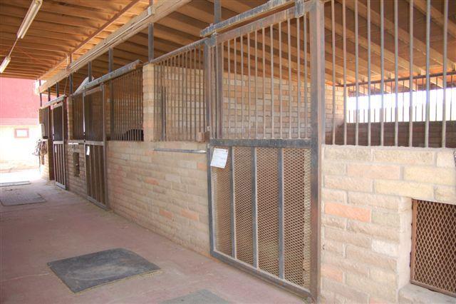 Phoenix AZ 85024 Photo 21