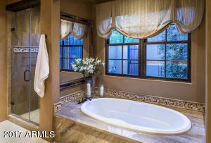 Spa Shower and Tub