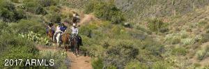 035_Horseback Riding
