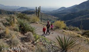 087_Hiking Trail