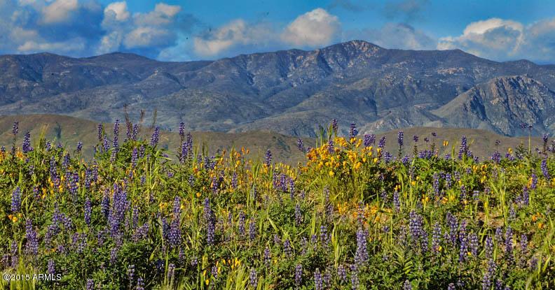 0 N Cow Creek Road Morristown, AZ 85342 - MLS #: 5707367