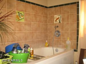 utility tub/dog wash